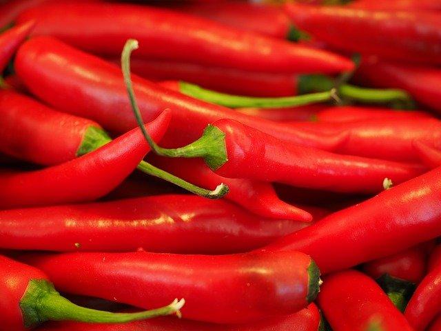Ohrpflaster zum Abnehmen bei Chili